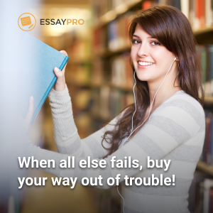 Best affordable essay writing service online