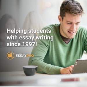 Professional custom essay writing help